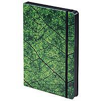 Ежедневник Evergreen, недатированный (артикул 7387.30)
