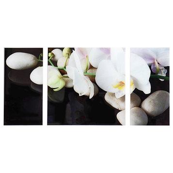 """Картина модульная на стекле """"Орхидеи"""" 2-25*50, 1-50*50 см, 100*50см"""