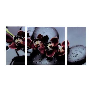 """Картина модульная на стекле """"Черная Орхидея"""" 2-25*50, 1-50*50 см,  100*50 см"""