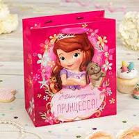 Пакет ламинированный вертикальный \'С Днем Рождения\', Принцессы, 23 х 27 х 11.5 см