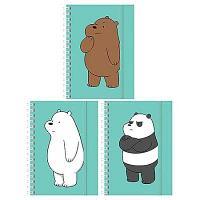 """Записная книжка Hatber """"Вся правда о медведях"""