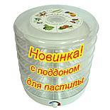 Сушилка для овощей и фруктов Ветерок2 Прозрачная Доставка, фото 3