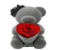 Признание Милая Медведь держит консервированный цветок