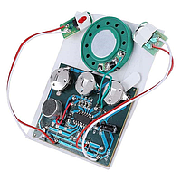 Перезаписываемый музыкальный модуль V1