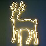 Flex LED Neon (Гибкий неон) 12*6 мм. 12 v (вольт). Бухта 5 метров., фото 5