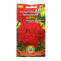 "Семена комнатных цветов Пеларгония зональная ""Алена"" F1 комнатная, 3 шт"