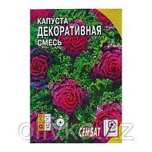 Семена цветов Капуста Декоративная, смесь, 40 шт