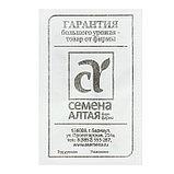 Семена Арбуз Ультраранний, бп, 0,5 г., фото 2