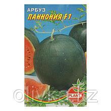 """Семена Арбуз """"Паннония"""", 10 шт"""