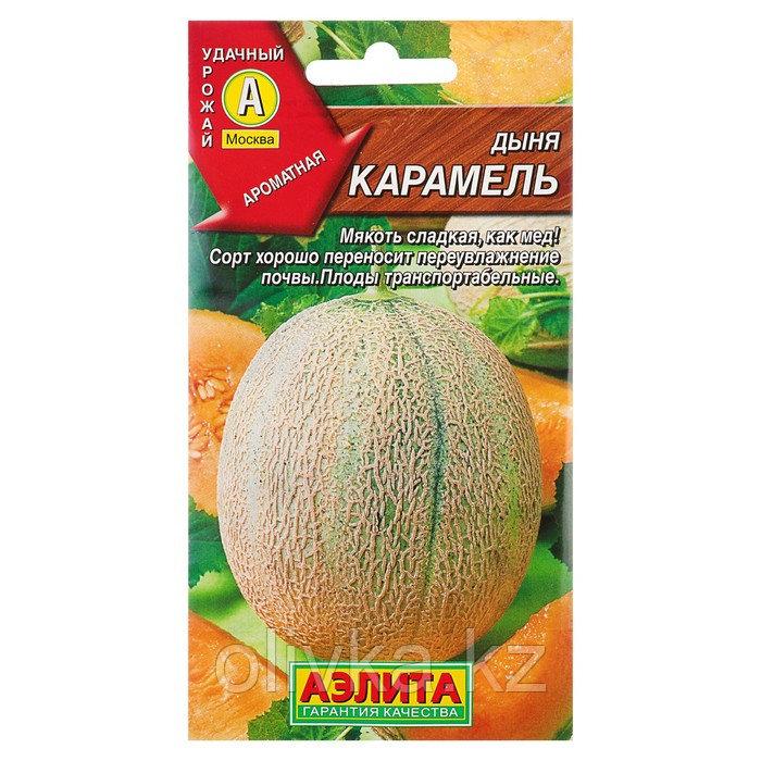 """Семена Дыня """"Карамель"""", 1 г"""