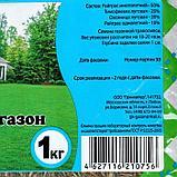 """Газонная травосмесь """"Быстрый газон"""", 1 кг, фото 2"""