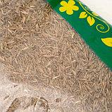 """Газонная травосмесь  """"Универсальная""""   0.8 кг (10шт/уп) Зеленый уголок, фото 3"""