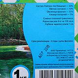 """Газонная травосмесь """"Газон для ленивых"""", 1 кг, фото 2"""