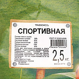 """Газонная травосмесь  """"Спортивная""""   2,5 кг Зеленый уголок, фото 2"""