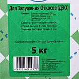 """Газонная травосмесь """"Для залужения откосов"""",  5 кг, фото 2"""