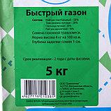 """Газонная травосмесь """"Быстрый газон"""",  5 кг, фото 2"""