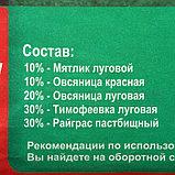 """Газон """"Спортивный"""" 5 кг, фото 2"""