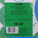 """Газонная травосмесь """"Гном"""",  10 кг, фото 2"""