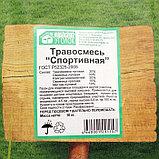 """Газонная травосмесь  """"Спортивная"""" 10 кг Зеленый уголок, фото 2"""