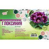 """Набор для выращивания домашних цветов """"Глоксиния"""", фото 2"""