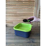Набор семян «Моя микрозелень», бутылка с дозатором, «Здоровья клад», набор 6 шт., фото 5
