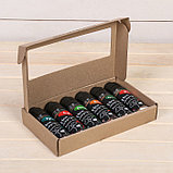 Набор семян «Моя микрозелень», бутылка с дозатором, «Здоровья клад», набор 6 шт., фото 7