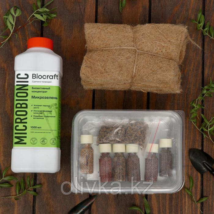 """Набор для выращивания Микрозелени """"BioCraft"""""""