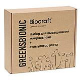 """Набор для выращивания Микрозелени """"BioCraft"""", фото 3"""