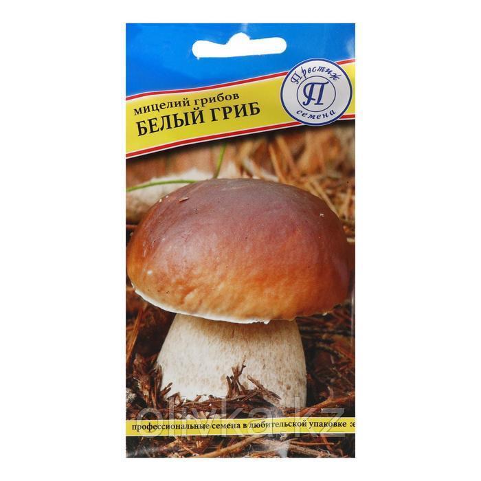 Мицелий грибов Белый гриб,  60 мл