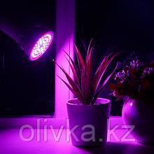 Светодиодная лампа для растений Luazon Lighting, 4,5 Вт, E27, 220В