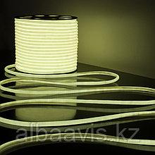 Холодный неон полупрофессиональный матрица SMD 3528, 220в Flex LED Neon , гибкий неон, холодный неон