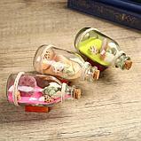 """Сувенир в бутылке """"Ракушки"""" 12*6*6см, микс, фото 2"""