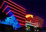 Холодный неон 24х12 мм. матрица 220в SMD 3528, Flex LED Neon , гибкий неон, холодный неон, лента неоновая, фото 6