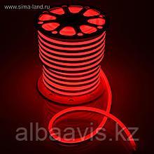 Холодный неон 24х12 мм. матрица 220в SMD 3528, Flex LED Neon , гибкий неон, холодный неон, лента неоновая