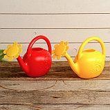 Лейка, 1.5 л, с рассеивателем, цвет МИКС, «Ромашка», фото 5