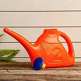 Лейка, 2 л, с рассеивателем, цвет МИКС, «Ассорти», фото 4
