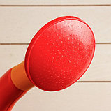Лейка, 10 л, с рассеивателем, цвет МИКС, «Классика», фото 3