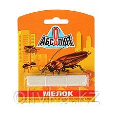 """Мелок """"Абсолют"""" для уничтожения насекомых, в блистере, 1 шт"""