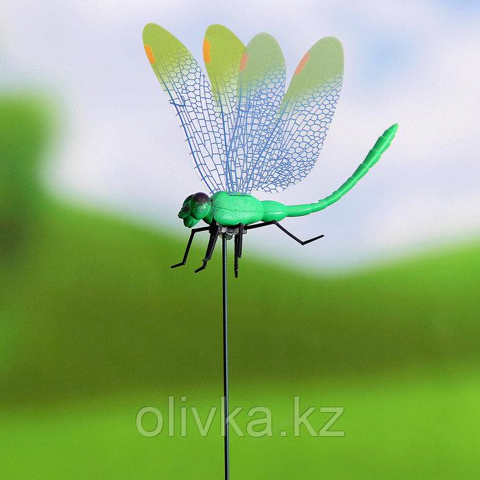"""Декоративный штекер """"Стрекоза с прозрачными крылышками"""" микс"""