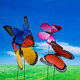 "Декоративный штекер ""Бабочка махаон с блёстками"" микс, фото 3"
