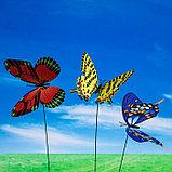 "Декоративный штекер ""Бабочка махаон с блёстками"" микс, фото 4"