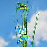 "Штекер садовый, декоративный ""Бабочки"" 5х5см, 75см, фото 2"