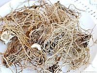 Валериана корень цельный упаковка 100 гр