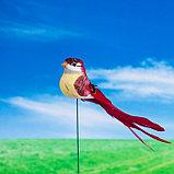 """Штекер декоративный для комнатных растений """"Птичка"""" 3х4см, 17см, фото 4"""