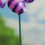 """Декор садовый """"Улыбающаяся пчёлка"""" штекер 40 см, микс, фото 4"""