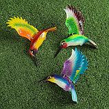 """Декоративный штекер """"Колибри с поднятыми крыльями"""" микс, фото 5"""