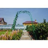 Арка садовая, разборная, 240 × 125 × 36.5 см, металл, зелёная, «Ёлочка», Greengo, фото 4