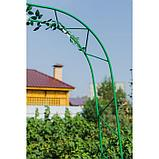 Арка садовая, разборная, 240 × 125 × 36.5 см, металл, зелёная, «Ёлочка», Greengo, фото 5