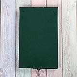 Ящик почтовый без замка (с петлёй), вертикальный, зелёный, фото 5