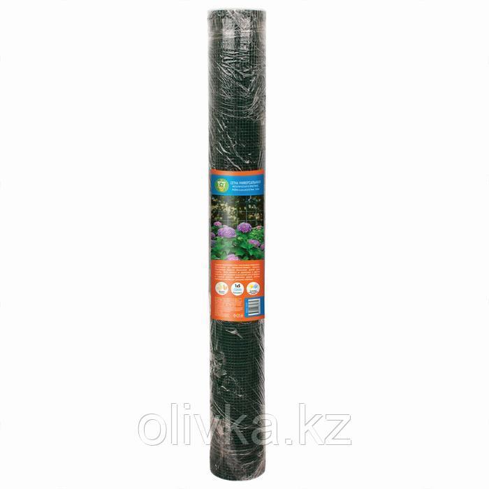 Сетка универсальная, 1 × 5 м, ячейка 0,64 × 0,64 см, толщина 0,6 мм, металл в пластике